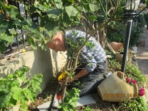 Tor reparerer vannledningen